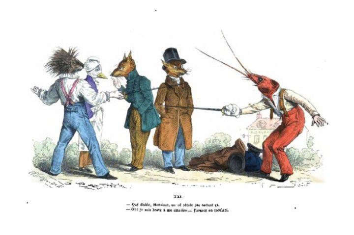 animal duel .jpeg